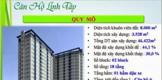 Tong-The-Can-Ho-Linh-Tay