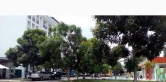 Dat-Nen-Du-An-Casa-Garden-Binh-Chanh